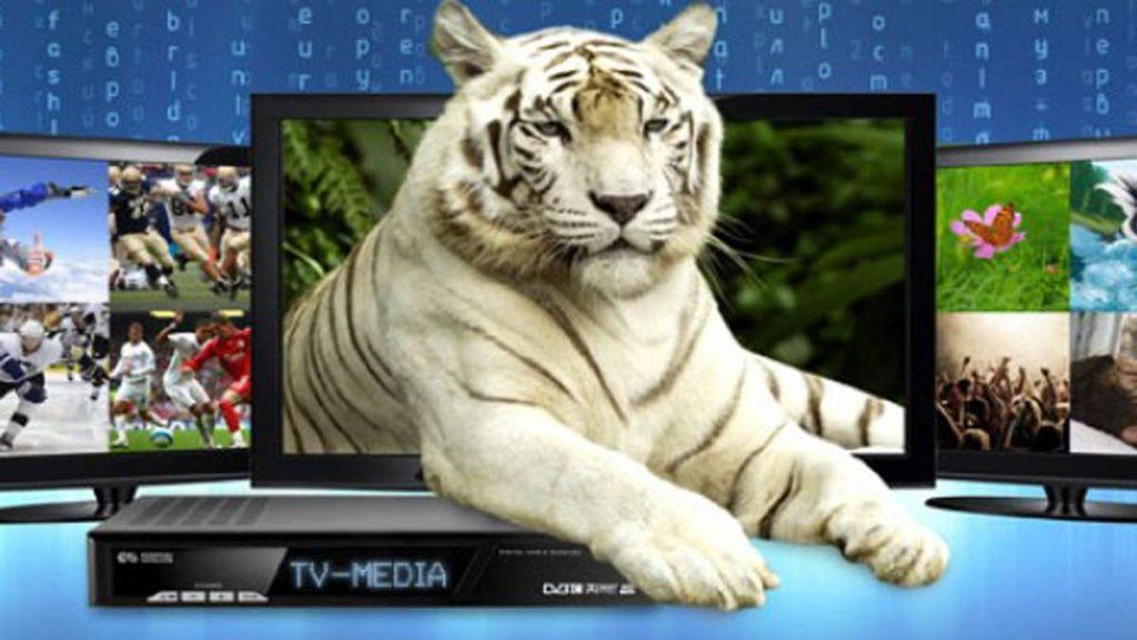 Подключиться к цифровому телевидению